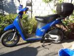 Piaggio Free 50 Catalysed